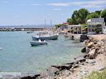 Bootjes aan het haventje van Heraion (Ireon) - Eiland Samos - Foto van De Griekse Gids