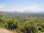 Olijfgaarden aan de vlakte bij Pythagorion en Heraion (Ireon) - Eiland Samos - Foto van De Griekse Gids